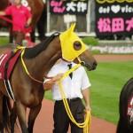 【競馬】2016/5/15(日)第11回ヴィクトリアマイル(GⅠ)枠順確定