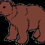 【話題】長野でスノボ女性の自撮り映像に追いかけてくるクマの姿が 「オーマイガッ!ビデオ撮ったらクマに追いかけられてた! 」